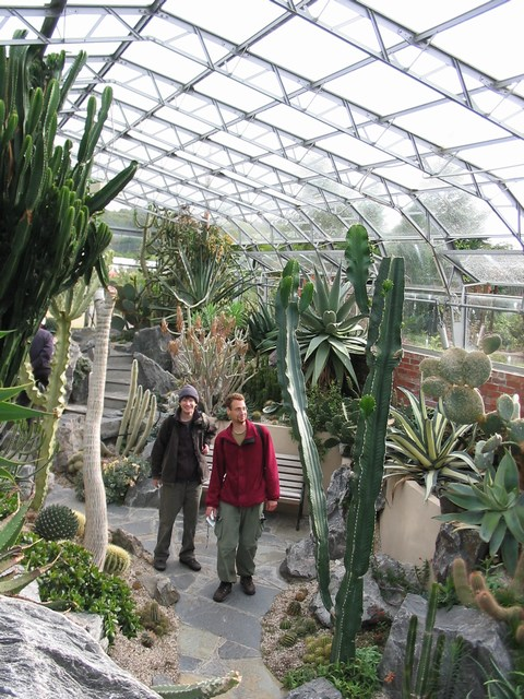 Scotland: Cactii in the Garden (With my Iseali friends)