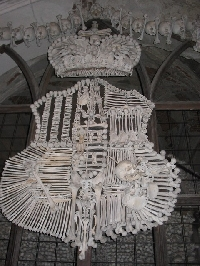 The Shield of Bones