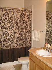 Main Bathroom Curtains